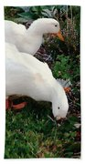 Ducks In The Garden At The Shipwright's Cafe Beach Towel