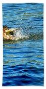 Ducks In Water Beach Towel
