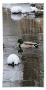 Ducks In Winter Beach Towel