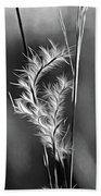 Dune Grass - Paint Bw Beach Towel