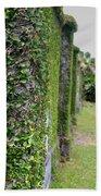 Dungeness Ivy Wall Beach Towel