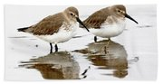 Dunlin Seeing Double Beach Sheet