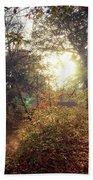 Dunmore Wood - Autumnal Morning Beach Sheet