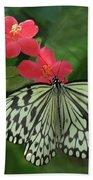 Durham Butterfly #5 Beach Towel