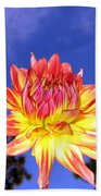 Dusk And A Dahlia Beach Towel