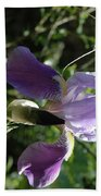 Dwarf Lake Iris Beach Towel