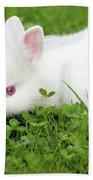 Dwarf White Bunny Spring Scene Beach Towel