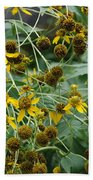 Dying Sun Flowers Beach Towel