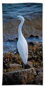 Eager Egret Beach Towel