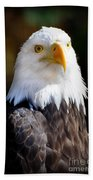 Eagle 23 Beach Towel
