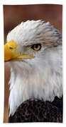 Eagle 25 Beach Towel