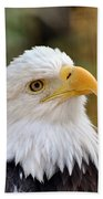 Eagle 6 Beach Towel