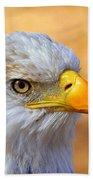 Eagle 7 Beach Towel by Marty Koch