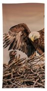 Bald Eagle And Eaglet In Nest Beach Towel
