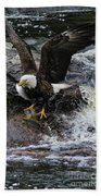 Eagle Catches Fish Beach Towel
