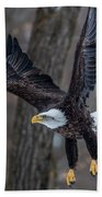 Eagle In The Forest Beach Towel