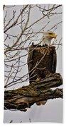 Eagle Beach Towel