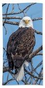 Eagle Mean Muggin Me Beach Sheet