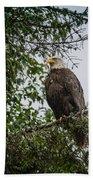 Eagle Feet Beach Towel