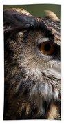 Eagle Owl 4 Beach Towel