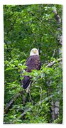 Eagle Watch Beach Towel
