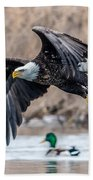 Eagle With Lunch Beach Towel