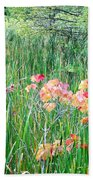 Early Fall Color Beach Towel