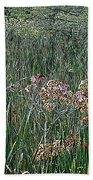 Early Fall Color Woodcut Beach Towel
