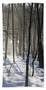 Early Morning Fog In A New Hampshire Forest Beach Towel