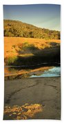 Early Morning Pond Beach Towel