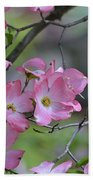 Early Spring Color Beach Towel