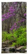 Early Spring On Mill Creek 2 Beach Towel