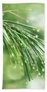 Early Spring Woodland Beach Towel