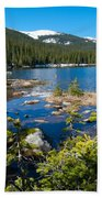 Early Summer At Finch Lake Beach Towel