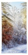 Early Winter's Walk Beach Towel
