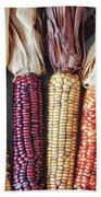 Ears Of Indian Corn Beach Sheet