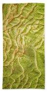 Earth Art 9511 Beach Towel