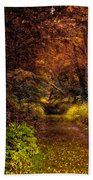 Earth Tones In A Illinois Woods Beach Towel