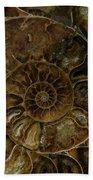 Earth Treasures - Brown Amonite Beach Towel