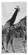 East Africa: Giraffe Beach Towel