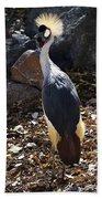 East African Crowned Crane Beach Towel