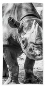 Eastern Black Rhinoceros Beach Towel