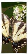 Eastern Tiger Swallowtail  Butterfly Wingspan Beach Towel