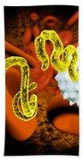 Ebola Virus Beach Towel