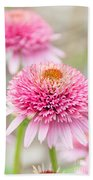Echinacea Butterfly Kisses Beach Towel