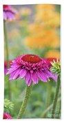 Echinacea Catharina Red  Beach Towel