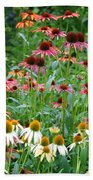 Echinacea Multi Mix Beach Towel