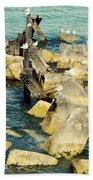 Edgewater Shores Beach Towel