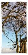 Edinburgh - Caption Hill Trees Beach Sheet