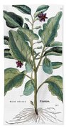 Eggplant, 1735 Beach Towel
